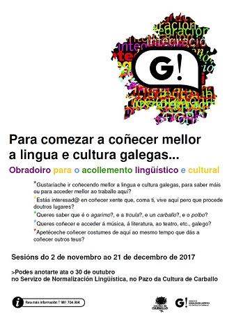 """Gustaríache que che dixesen: """"Que rápido aprendiches a falar galego!""""?"""